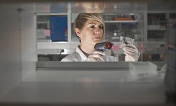 Håper å knekke nytt IPN-virus