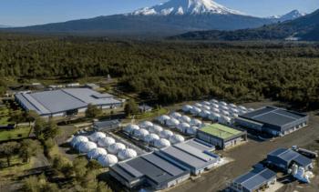 Universidad Austral impartirá Diplomado en Recirculación para la Acuicultura