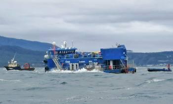 Exigen a Blumar determinar biomasa de salmones hundida en centro Caicura