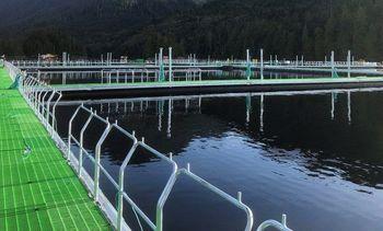 Grupo Ersil incorporará nanopartículas a redes de cultivo de salmón