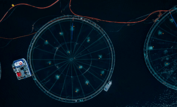 Grieg data platform 'will offer a window on the ocean'