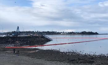 SMA ordena medidas tras colapso del Terminal de Carga Puerto Calbuco