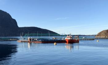 Nytt lakseselskap skal produsere laks i full slaktestørrelse i lukket anlegg i sjø