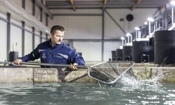 Skal levere fôringssystem til matfiskanlegg i Nederland