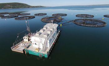 Wheels finally start to turn for Nova Scotia aquaculture