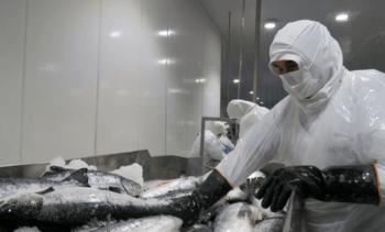 Los desafíos de la salmonicultura chilena frente a una nueva Constitución