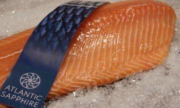 Atlantic Sapphire share issue raises $121m