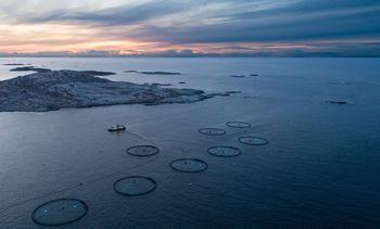 Slik vil Bjørøya produsere mer
