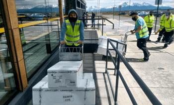 Nye flymuligheter kutter transporttiden for chilensk laks