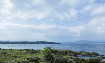 Irish organic aquaculture in the European spotlight