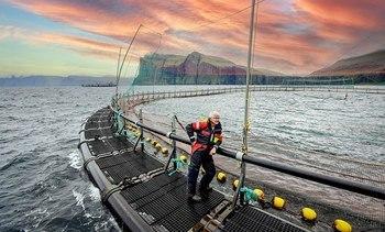 Hiddenfjord satser på lukkede anlegg - vil minske tiden i sjø