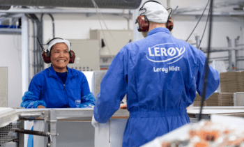 Lerøy harvest figures up for Q4 and whole of 2020
