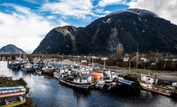 Pescadores artesanales podrán realizar capturas accidentales de salmón