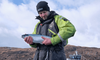 Better feed keeping salmon in the pink, says Mowi