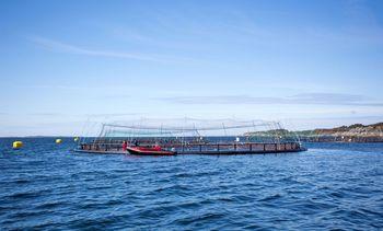 Akvakulturforskning for fremtiden