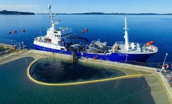 Escasez de insumos y astilleros lleva a prórroga de normativa a wellboats