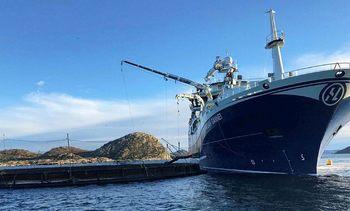 Avviste Sjømatbedriftenes klage i statsråd