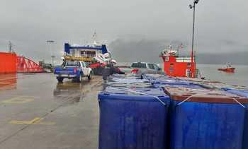 Mortalidad de salmón por floraciones algales nocivas alcanza casi 6.000 toneladas