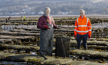Clyde oyster farmer to double size of site
