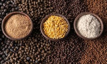 Skretting aumentará uso de ingredientes provenientes de fuentes alternativas