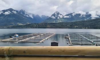 Gremio salmonicultor aborda propuestas del sector en nueva publicación regional