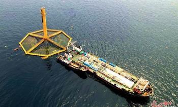 Centro de salmón en China logra su primera cosecha comercial a gran escala