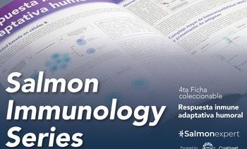 """""""La inmunidad mediada por anticuerpos es bastante desarrollada en salmones"""""""