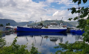 Salmon giant SalMar doubles Hydrolicer capacity