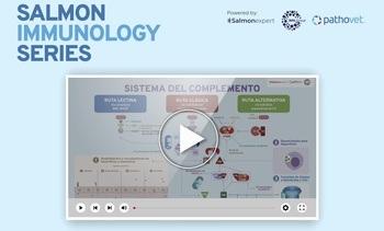 Inmunidad de mucosas: Clave para el equilibrio entre microbiota y patógenos (video)