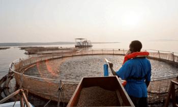 Aqua-Spark plans $300m investment in Africa