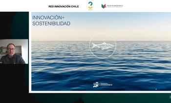 El aprendizaje de Salmones Camanchaca tras caso en piscicultura Petrohué