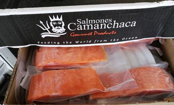 Productor de salmón chileno aumentará capital para reestructurar operaciones