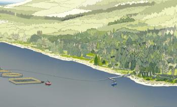 Planning bid made for Scotland's first semi-closed salmon farm