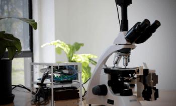 Startup nacional trabaja nuevo dispositivo para detectar floraciones algales nocivas
