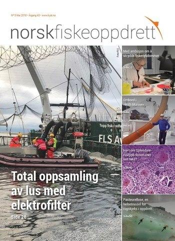 gratis svart dating sites leirvik