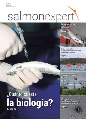 Salmonexpert - 2018/62