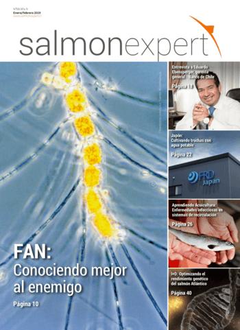 Salmonexpert - 2019/68