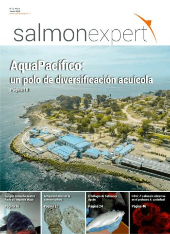 Salmonexpert - 2019/72