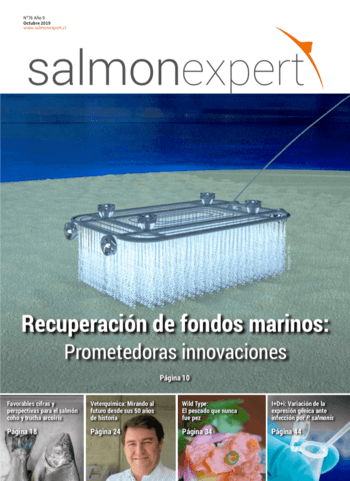 Salmonexpert - 2019/76