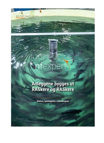 NFExpert 2020/3