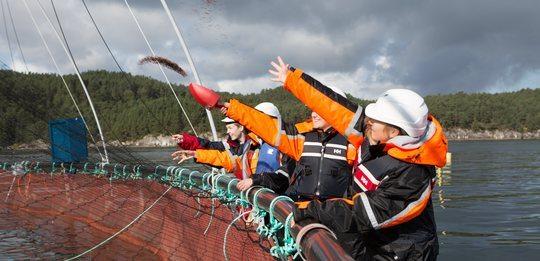 Forventar mange søkere til akvakultur-linjene