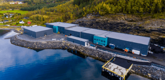 Three-day hatching for Benchmark's flagship salmon egg facility