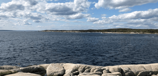 Cermaq given two more lease options for Nova Scotia