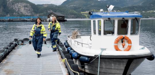 Salmonicultora reduce consumo de diésel en 1 millón de litros con conexiones eléctricas