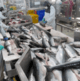 Atlantic salmon production up 10% in Chile last year