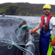 How a diver netted a second fish farming career